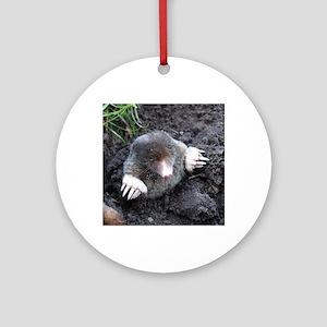 Adorable Mole in Dirt Round Ornament