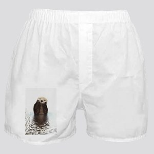Bashful Sea Otter Boxer Shorts