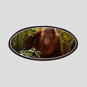 Orangutan Child 7358 Patch