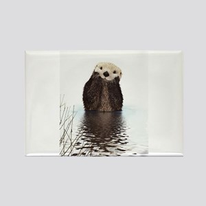 Bashful Sea Otter Magnets