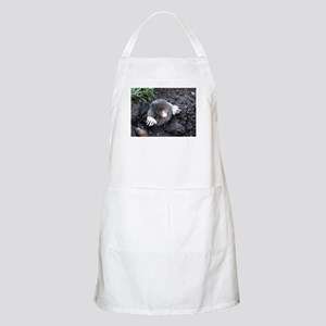 Adorable Mole in Dirt Apron