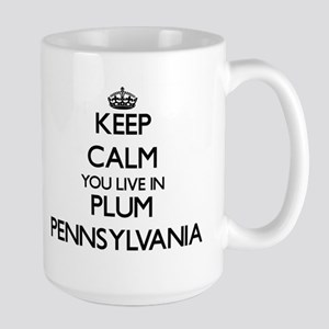 Keep calm you live in Plum Pennsylvania Mugs