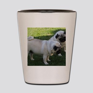 Two fawn Pugs Shot Glass