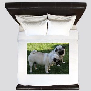 Two fawn Pugs King Duvet