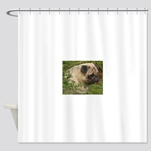 Fawn Pug with foliage Shower Curtain