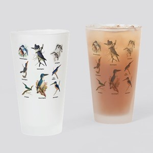 Birder Kingfisher Illustrations Drinking Glass