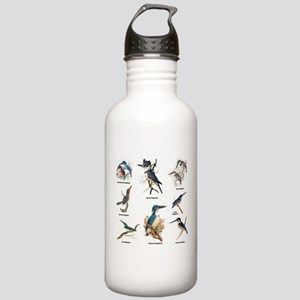 Birder Kingfisher Illustrations Water Bottle