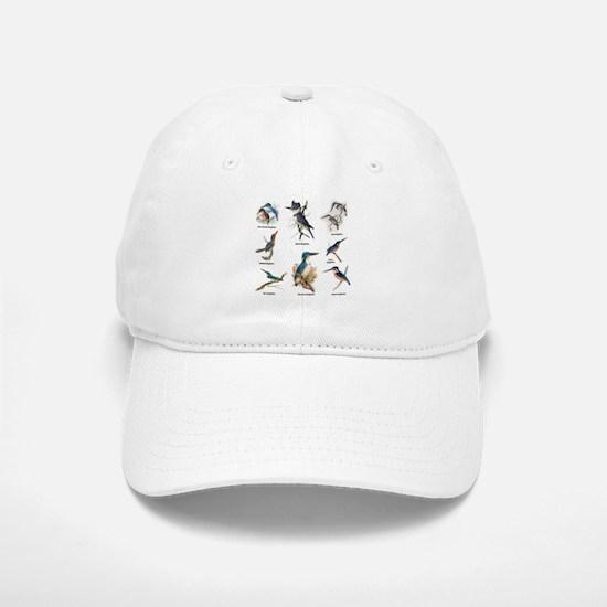 Birder Kingfisher Illustrations Baseball Baseball Baseball Cap
