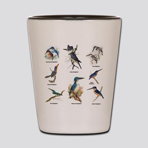Birder Kingfisher Illustrations Shot Glass