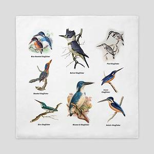 Birder Kingfisher Illustrations Queen Duvet