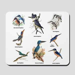 Birder Kingfisher Illustrations Mousepad