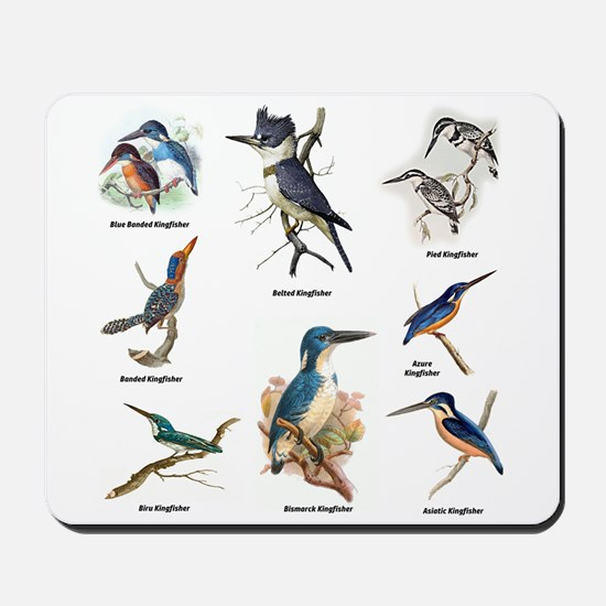 Birder Kingfisher Illustrations Mousepad