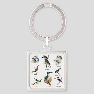 Birder Kingfisher Illustrations Keychains