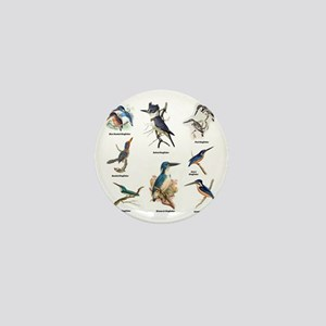 Birder Kingfisher Illustrations Mini Button