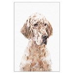 English Setter (Orange Belton) Large Poster
