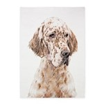 English Setter (Orange Belton) 5'x7'Area Rug