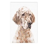 English Setter (Orange Be Postcards (Package of 8)