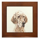 English Setter (Orange Belton) Framed Tile