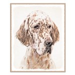 English Setter (Orange Belton) Small Poster