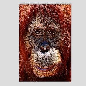 Orangutans Postcards (Package of 8)