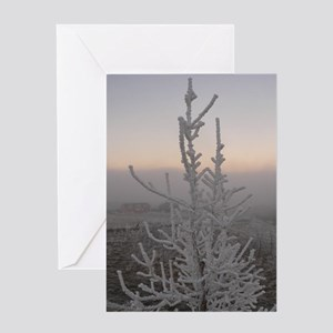 Frost At Dusk Solstice Card