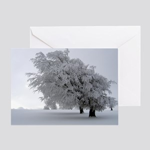 Black Forest White Holiday Card