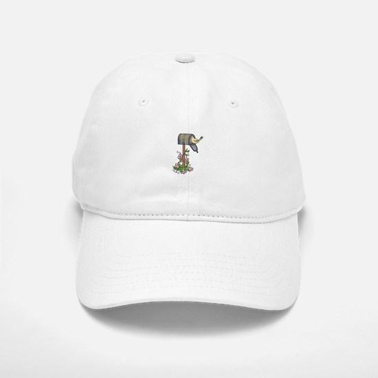 BIRD ON MAILBOX Baseball Baseball Baseball Cap