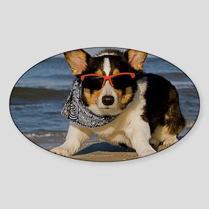 Beach Patrol Officer Sticker (Oval)