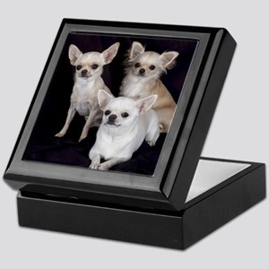 Adorable Chihuahuas Keepsake Box