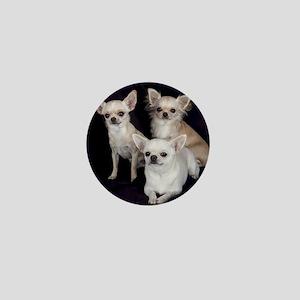 Adorable Chihuahuas Mini Button
