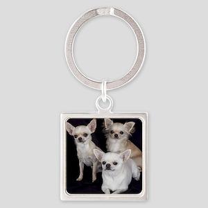 Adorable Chihuahuas Square Keychain