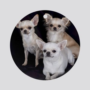 Adorable Chihuahuas Round Ornament