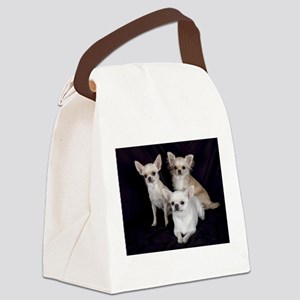 Adorable Chihuahuas Canvas Lunch Bag