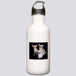 Adorable Chihuahuas Stainless Water Bottle 1.0L
