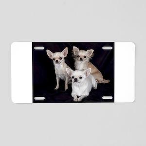 Adorable Chihuahuas Aluminum License Plate