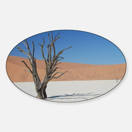 Young desert elephant Namibia Sticker (Oval)
