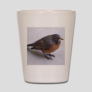 Robin Shot Glass
