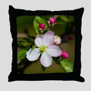 Appleblossom_2015_0201 Throw Pillow