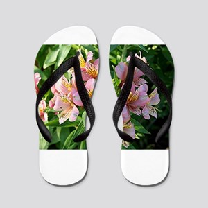 Alstroemeria Peruvian lily flowers in b Flip Flops