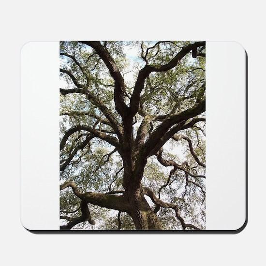 Savannah Oak Mousepad