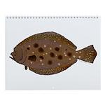 Atlantic Coastal Fishes 3 Wall Calendar