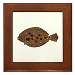 Summer Flounder Framed Tile