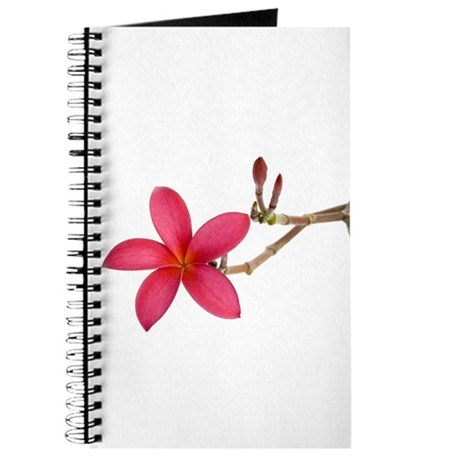 Red Frangipani flower Journal