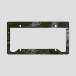 Baby Goes for a Swim License Plate Holder