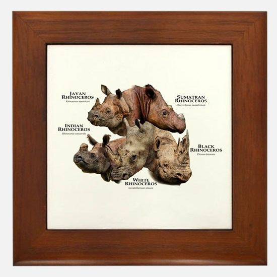 Rhinos of the World Framed Tile