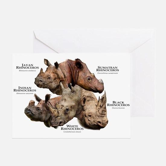 Rhinos of the World Greeting Card