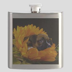 Boxer puppy in sunflower Flask