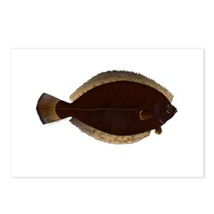 Winter Flounder Postcards (Package of 8)