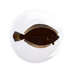 Winter Flounder 3.5