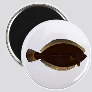 Winter Flounder Magnets
